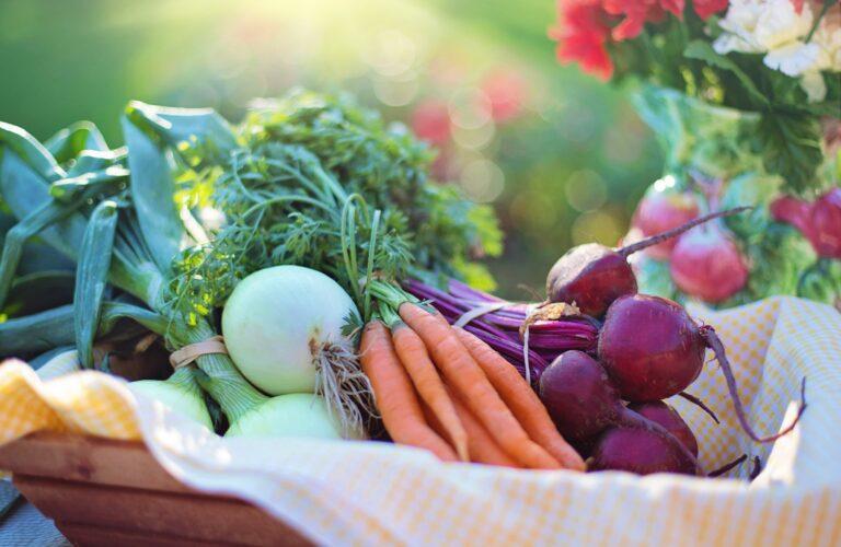 raw food, grøntsager, sund kost, RawChallenge, Vægttab