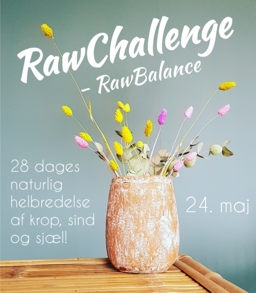 RawChallenge RawBalance, rawfood, lærke sjøsten rawsomevibes